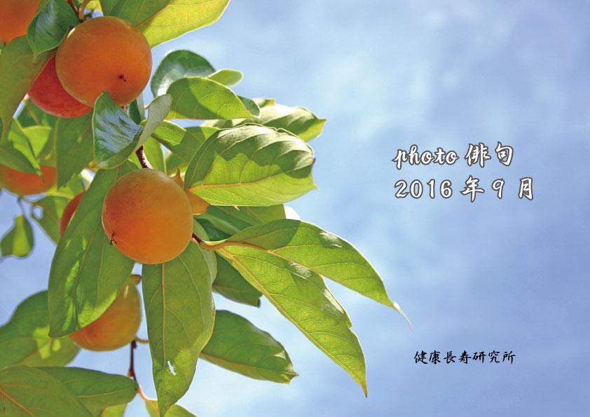 photo俳句(9月号)