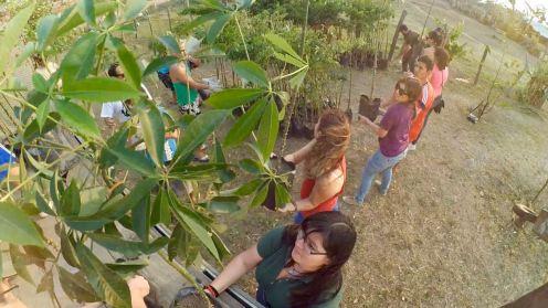 Voluntarios nuevos y antiguos hicieron trabajo de hormiga.