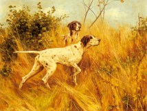 blinks_thomas_two_pointers_in_a_landscape