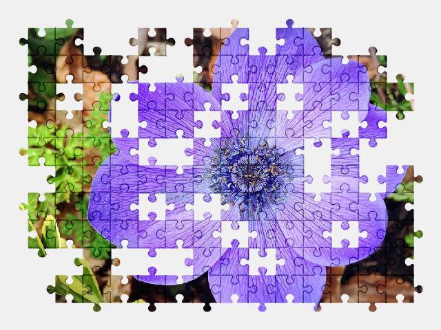 Purple Flower Free Jigsaw Puzzles Online