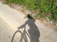 Biking on the NCR