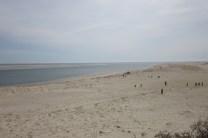 Cape Cod, beaches, selkies, fantasy, books, Marissa Doyle, Skin Deep