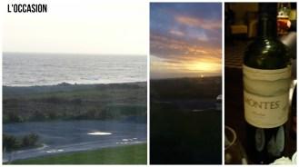The Connemara Coast Hotel View, and the single wine photo