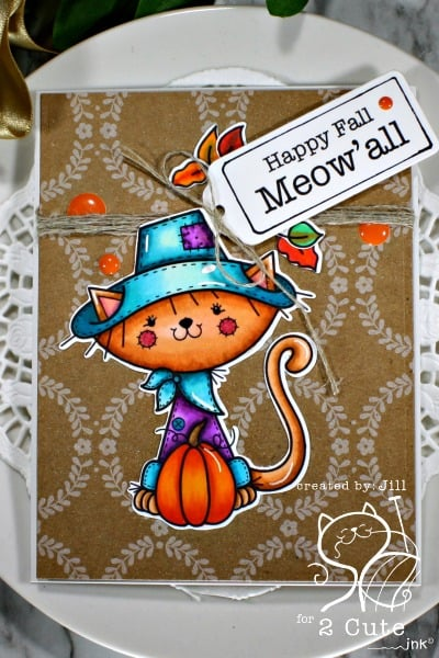 Copic Coloring - 2 Cute Ink Scarecrow Cat