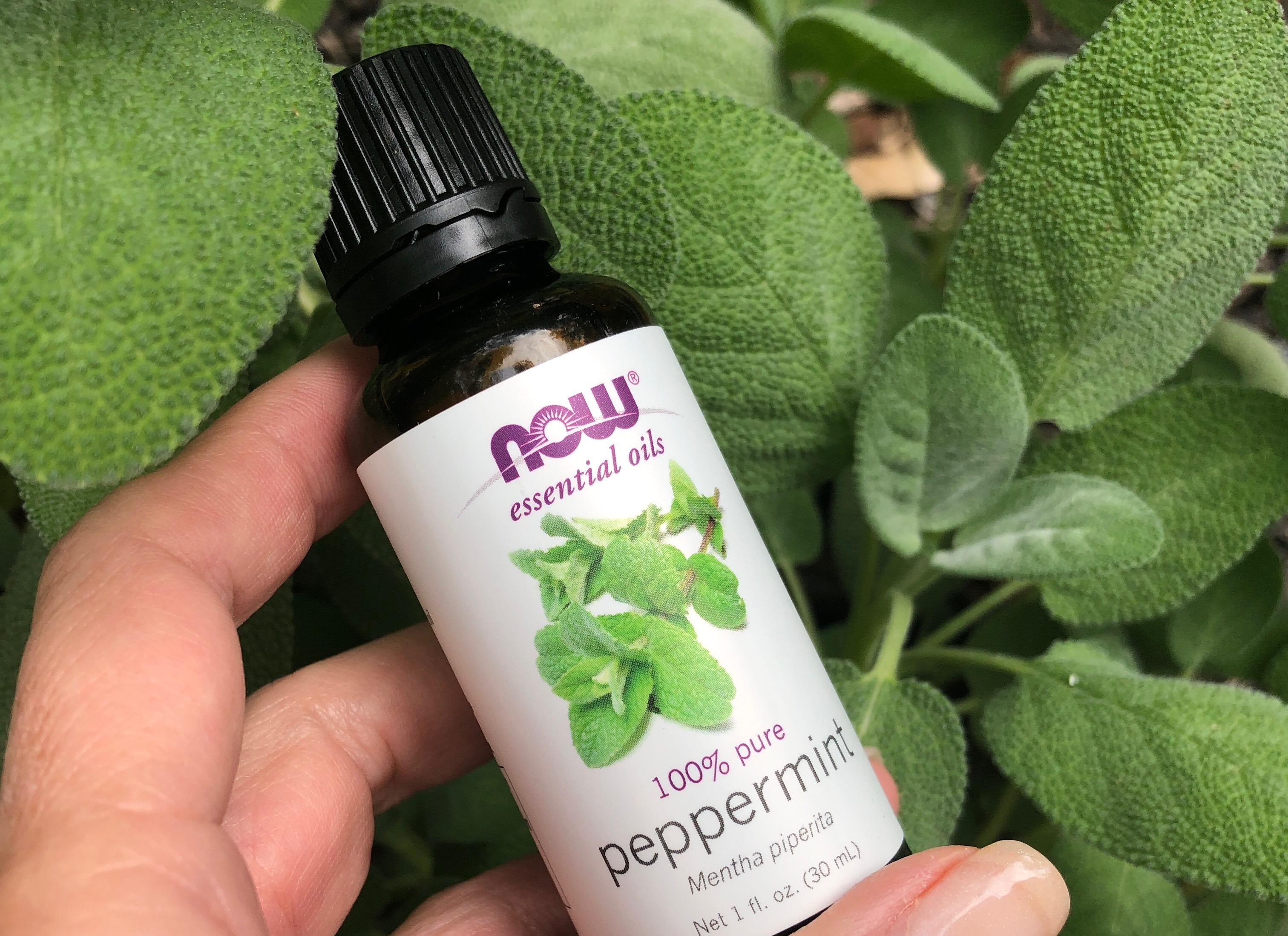 Peppermint Oil for Irritable Bowel? Sweet!