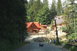 Bicaz Gorge (3)