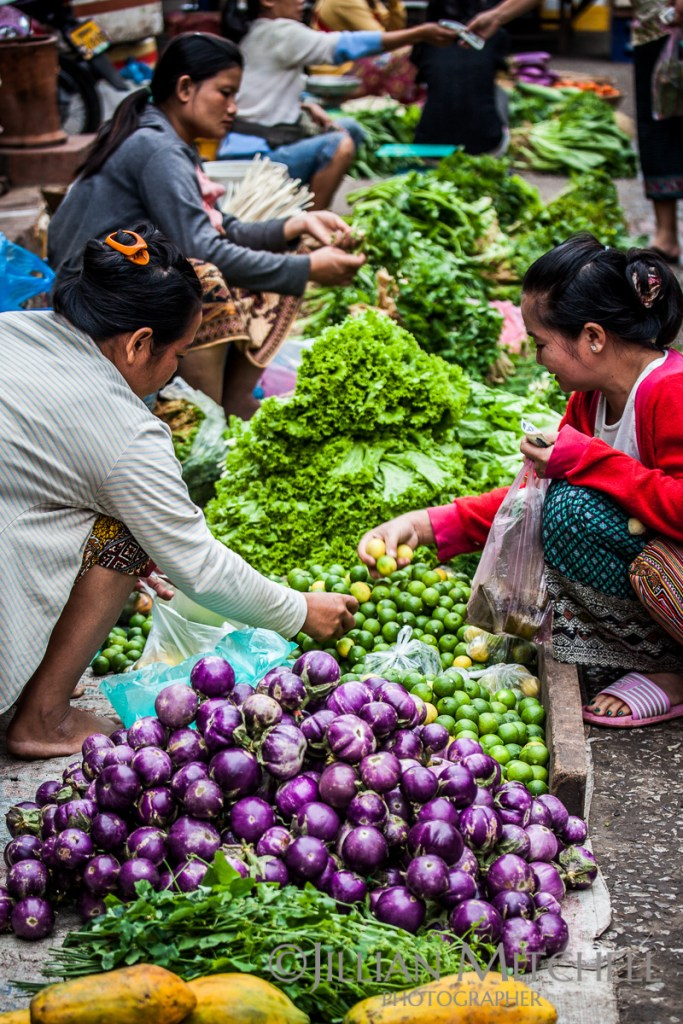 Experiencing the early morning fresh food market in Luang Prabang, Laos.
