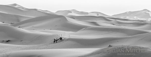 Camel trek on the fringes of the Sahara desert near Merzouga, Morocco.