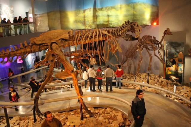 Dinosaur hall Museo del Desierto