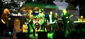 Ebey Island Fest