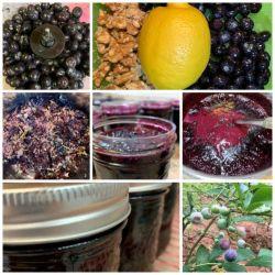 Blueberry Muffin Jam