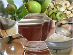 Spiced Apple Jelly