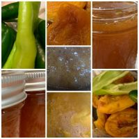 Nectarine and Hot Pepper Jelly