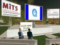 image from plenary not broadcast to Second Life
