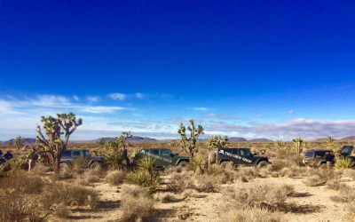 mayhem on the mojave trail