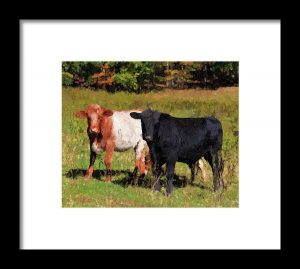 Cow Painting Artwork