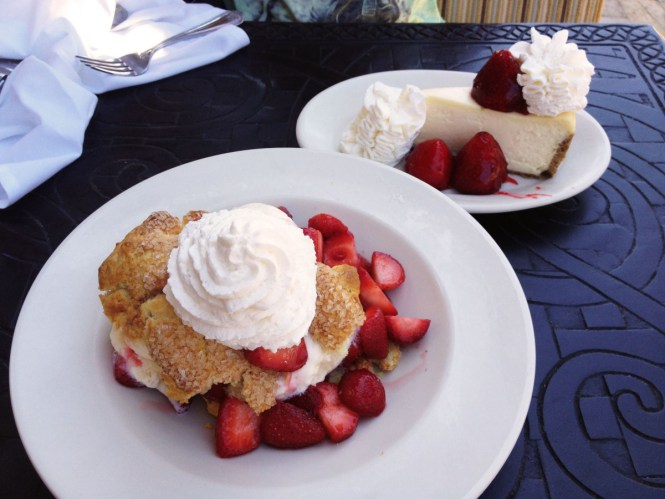Fresh Strawberry Cheesecake & Fresh Strawberry Shortcake