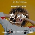 DJ X5-Afro Beats Now (Mixtape)
