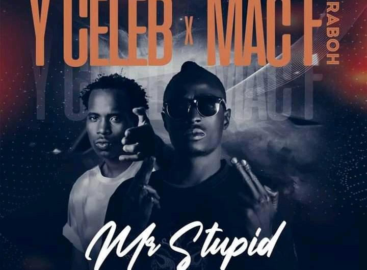 Y Celeb X Mac F Jeraboh-Mr Stupid.