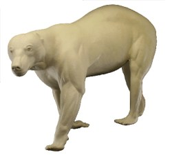Black Bear, Lifesize