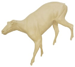 Mountain Goat, Lifesize