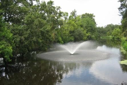 Audubon Park fountain.