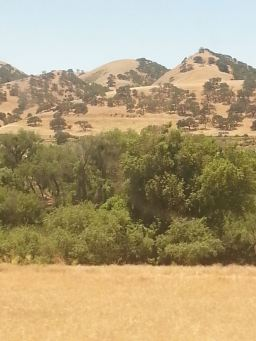More California scenery