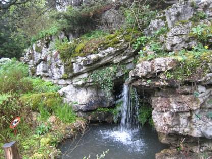 PIC_0045 Botanical Gardens