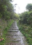 1534 Trail or Creek