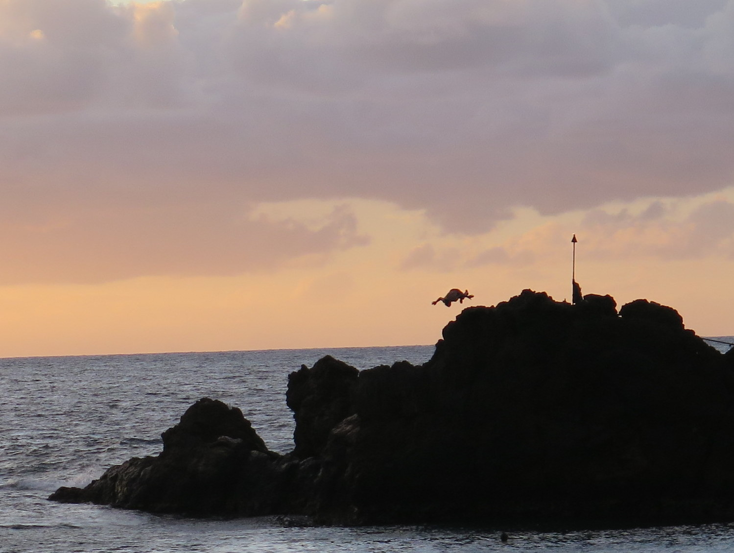 The torch lighting and cliff-diving ceremony is held every night at sunset at the Sheraton on Kaanapali Beach.