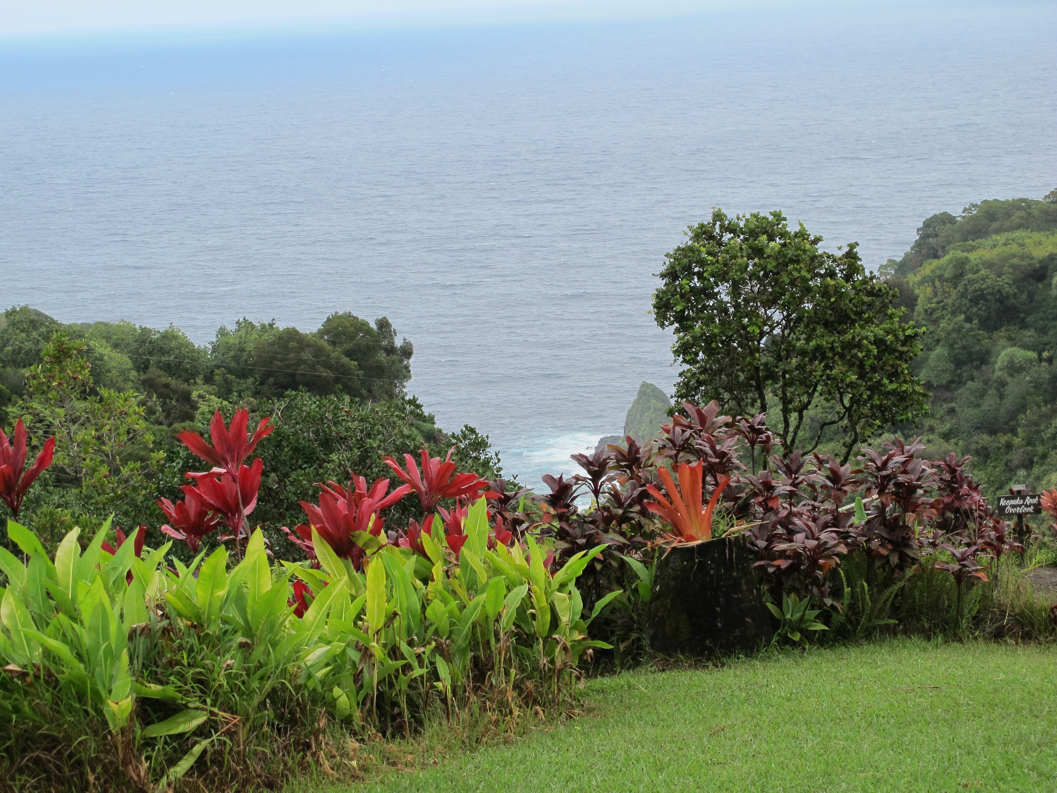 The Garden of Eden is a fabulous arboretum and nature spot on the road to Hana.