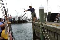 Jim Canole-Setting Sail In Newport 12