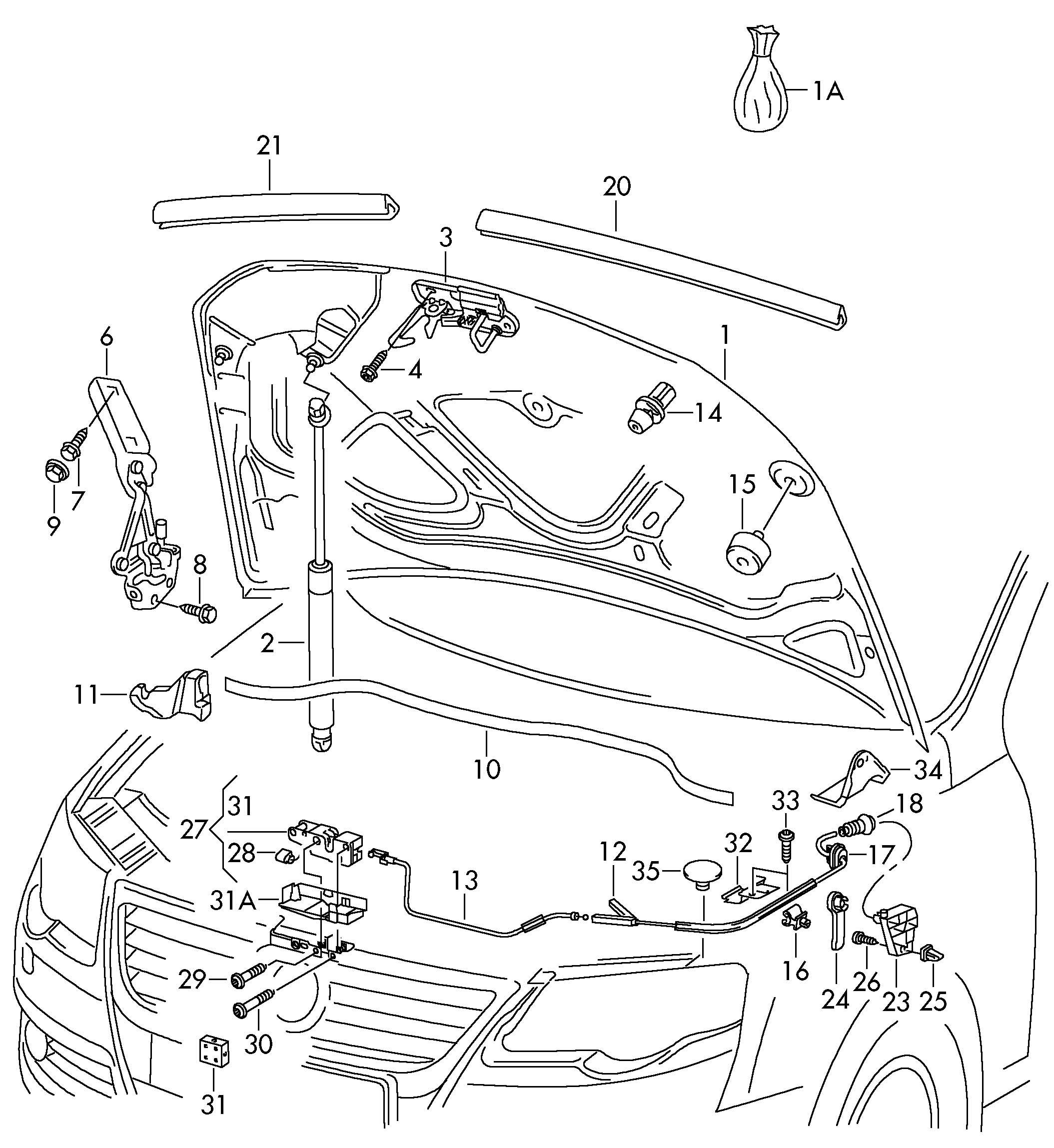 Volkswagen Hood