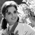 Dawn Wells, Mary Ann On Gilligan's Island, Dies Of Coronavirus Complications