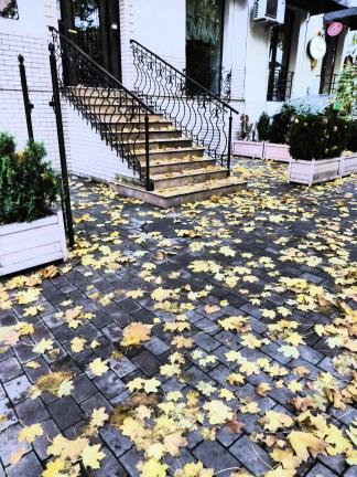 Autumn in Vake