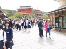 Hundreds of school kids on excursion.