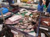 Tokyo Fishmarket & Edo Museum 005