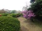 Tokyo Garden 010