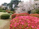 Tokyo Garden 036