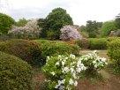 Tokyo Garden 038