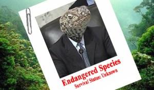 endangered-header