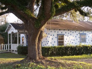Buna Polka Dot House