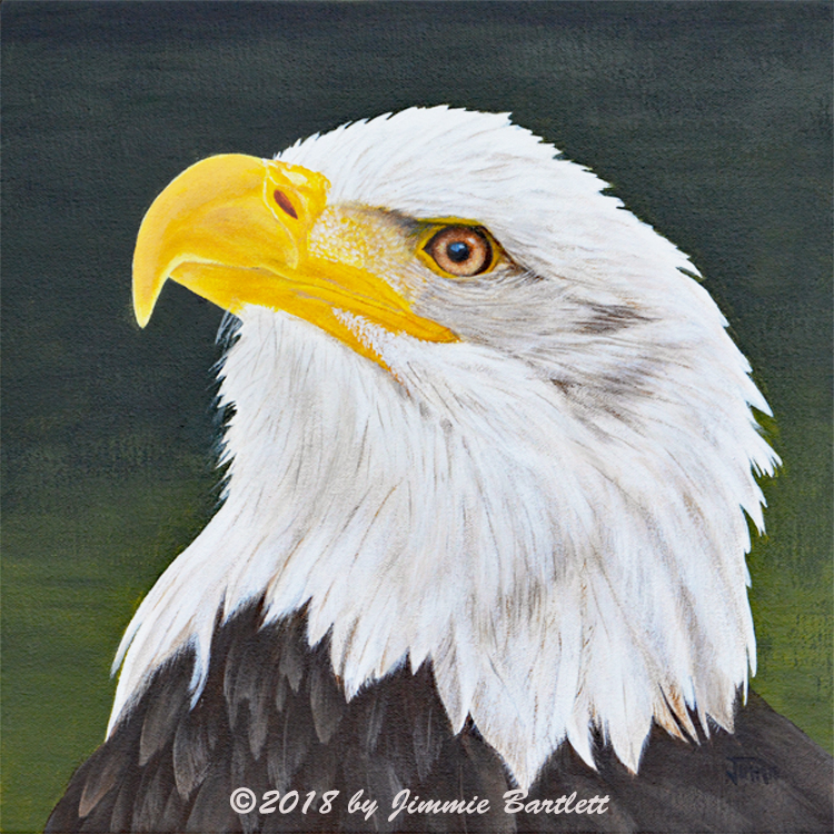 Proud Eagle an original acrylic painting