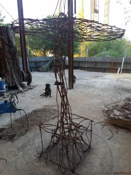 champignons-jardinsBroceliande-Jimmix15