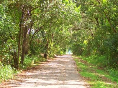 The bike trail heading east.