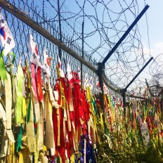 FLags left near the theme park longing for reunification
