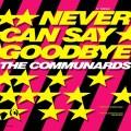 Never 12inch USA Promo