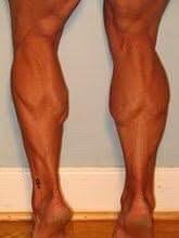 Bill Fehr's Calf Muscles
