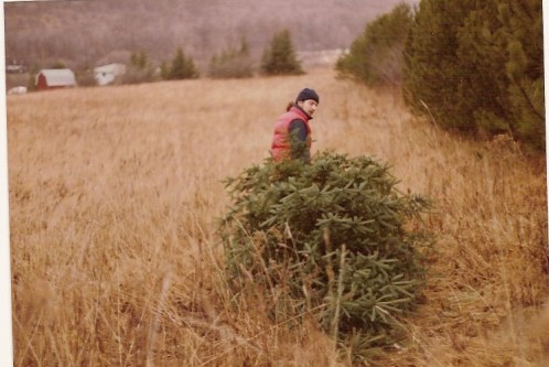 Stretch hauling a tree Franklinville 1990