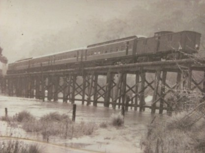 Historic photo of Curdies River trestle bridge with Curdies River in flood